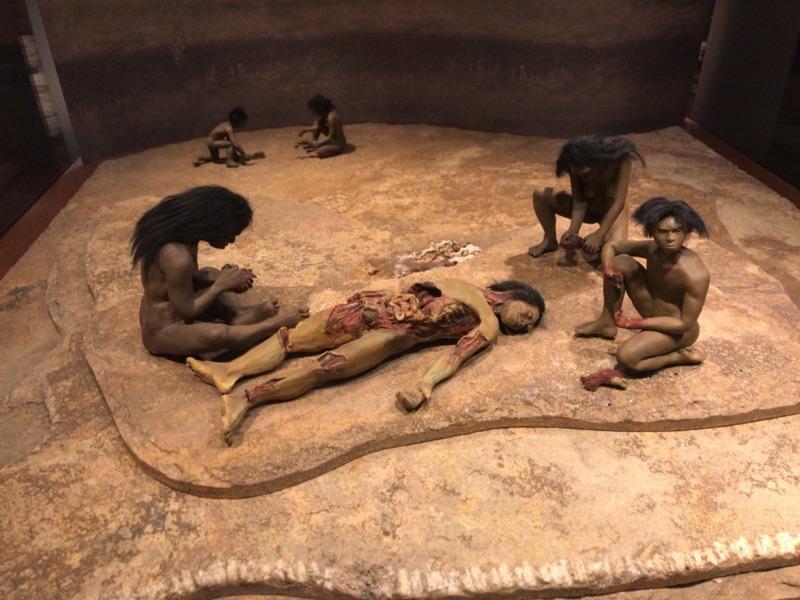 国立人類博物館